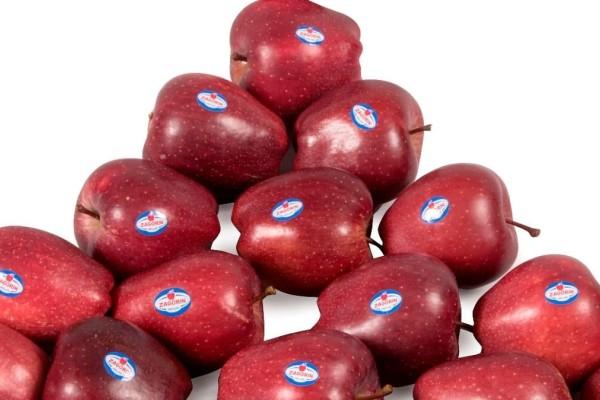 Μήλα ΖΑGORIN: Πέτυχαν την υψηλότερη διάκριση στα Μεσογειακά Βραβεία Γεύσης 2021