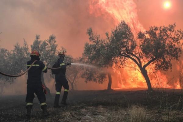 Πυρκαγιά στο Χιλιομόδι Κορινθίας!