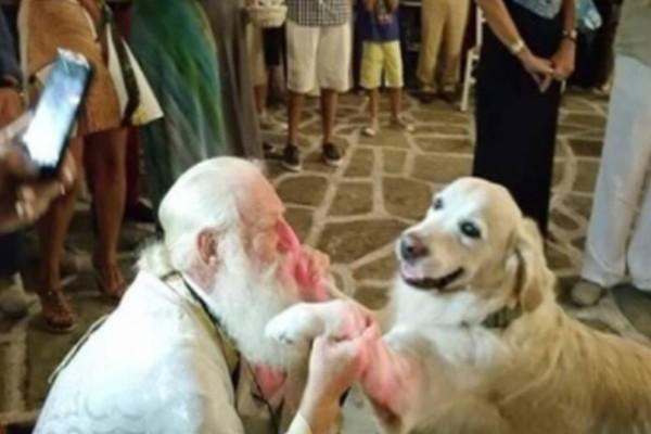 Iερέας επιτρέπει σε σκυλάκια να μπαίνουν στο χώρο της Εκκλησίας