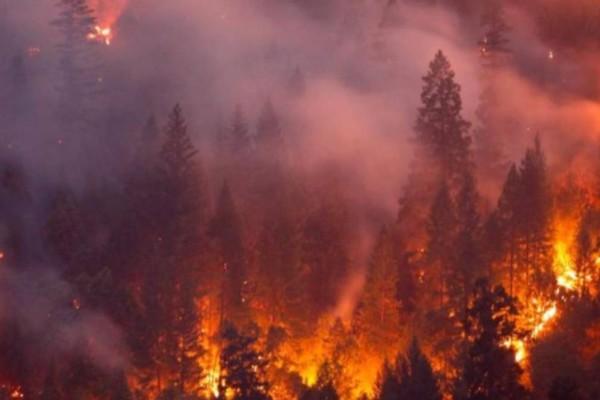 Ισχυρή πυρκαγιά στη Κερατέα!