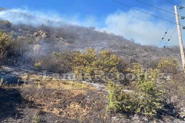 Φωτιά απειλεί σπίτια στην Φθιώτιδα - Κλειστή η Εθνική οδός