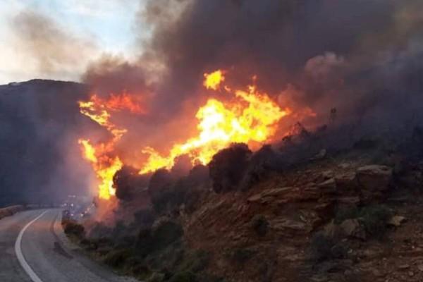 Συναγερμός: Φωτιά στον Πύργο Ηλείας