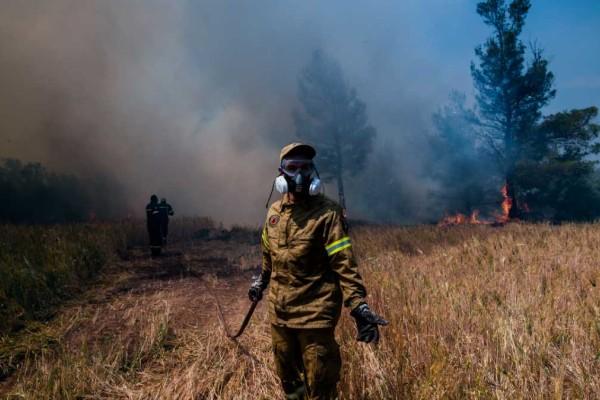 Φωτιά στον Σχίνο Κορινθίας: Ακόμη ένας οικισμός εκκενώνεται - Πέρασε μέσα από αυλές η λαίλαπα