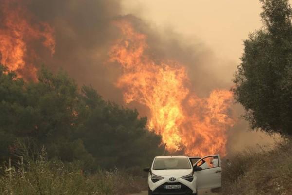 Φωτιά στον Σχίνο Κορινθίας: Σε κατάσταση έκτακτης ανάγκης το Αλεποχώρι - Πώς θα αποζημιωθούν οι πληγέντες