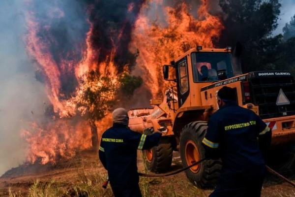 Φωτιά στον Σχίνο Κορινθίας: Αποκάλυψη «βόμβα» για το πώς άρχισε η πύρινη λαίλαπα - Κλειστοί οι δρόμοι λόγω αναζωπυρώσεων