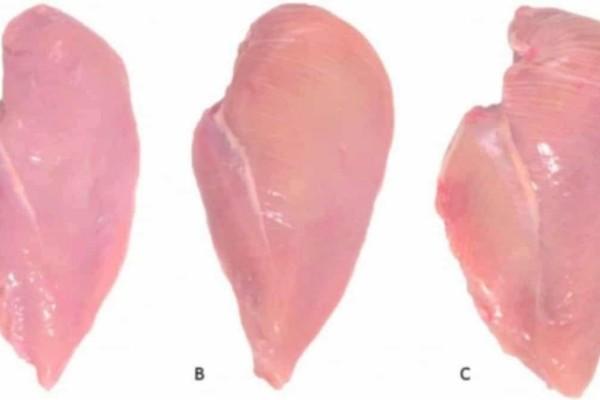 Μεγάλη προσοχή: Τι σημαίνουν οι λευκές ραβδώσεις στο κοτόπουλο (Video)