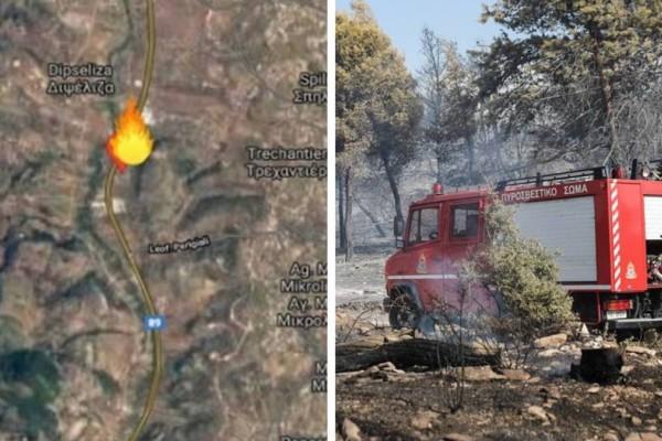 Πύρινη λαίλαπα στη Κερατέα: Εκκενώνεται οικισμός, ενισχύθηκαν οι δυνάμεις της Πυροσβεστικής