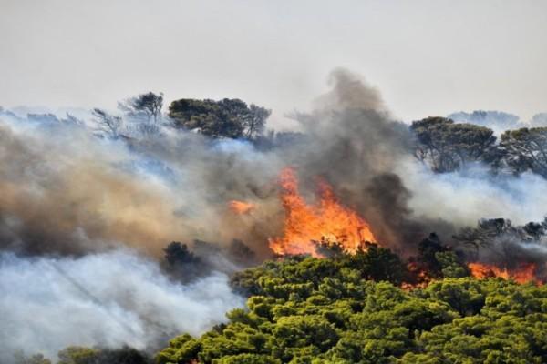 Πάτρα: Υπό μερικό έλεγχο η μεγάλη φωτιά που ξέσπασε το απόγευμα