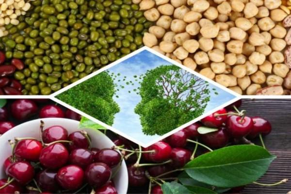 8+1 τροφές που προστατεύουν από το Αλτσχάιμερ και την άνοια - Δώστε προσοχή