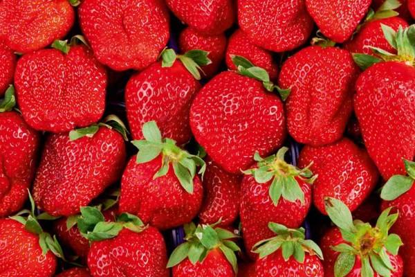 Φράουλες: 9+1 λόγοι για να τρώτε ατελείωτες - Πώς θα καλλιεργήσετε τις δικές σας
