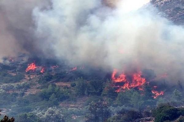 Πυρκαγιά στα Μέγαρα - Οι 18 περιοχές της Αττικής που κινδυνεύουν να γίνουν νέο... Μάτι φέτος το καλοκαίρι!