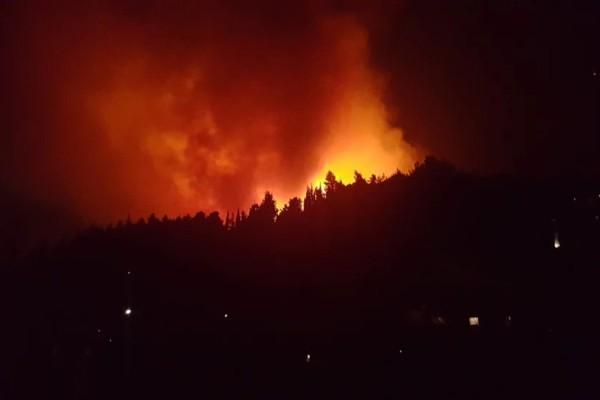 Φωτιά στην Κεφαλονιά: Έπιασαν τον εμπρηστή - Τον κυνηγούσαν δύο χρόνια