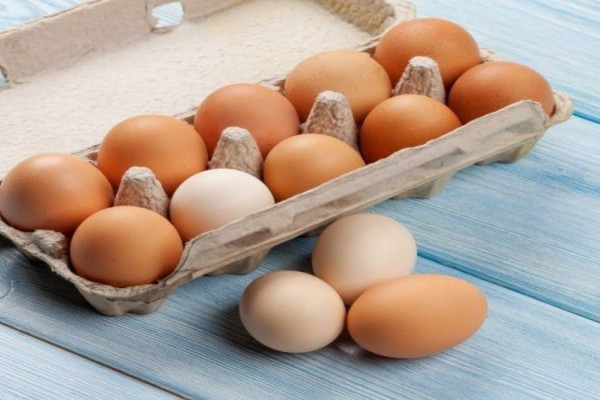 Ανάκληση χιλιάδων κοτόπουλων και «βιολογικών» αυγών