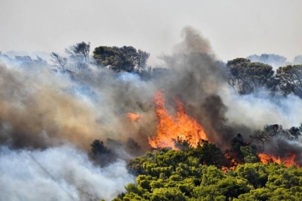 Φωτιά στην Ανάβυσσο: Διακοπή κυκλοφορίας στη Λαυρίου - Απομακρύνονται οι κάτοικοι από το Καταφύγι
