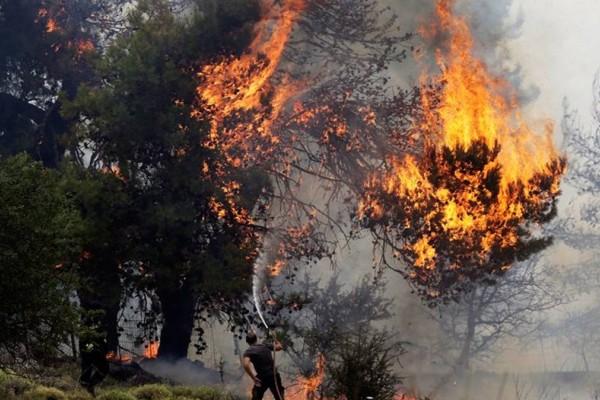 Πύρινη λαίλαπα σε Αργολίδα και Εύβοια - Συναγερμός στην Πυροσβεστική!