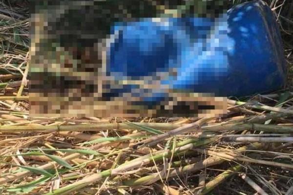 Συνεχίζεται το θρίλερ με το πτώμα στο βαρέλι -  Τα «στοιχεία κλειδιά» της υπόθεσης