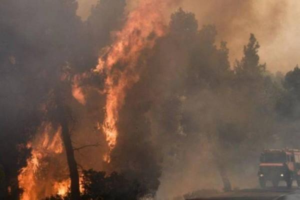 Μεγάλη πυρκαγιά και στη Χαλκιδική