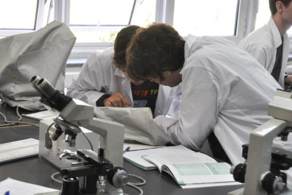 Φοιτητές Ιατρικής: Το ανέκδοτο της ημέρας (22/07)