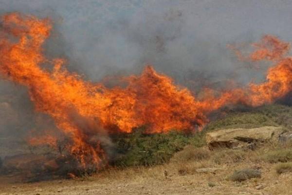 Διπλή φωτιά σε Διόνυσο και Άνδρο - Οι περιοχές που κινδυνεύουν
