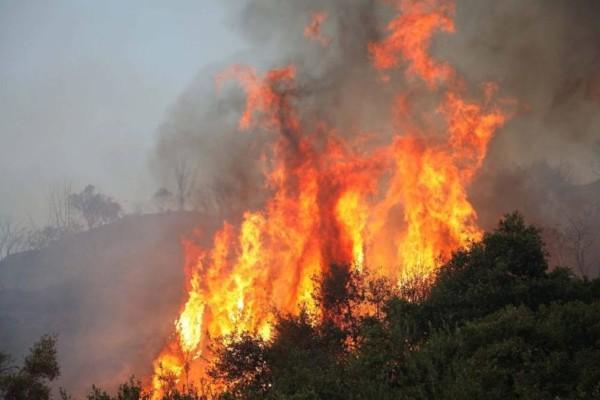 Φωτιά στον Αυλώνα - Σε συναγερμό η Αττική