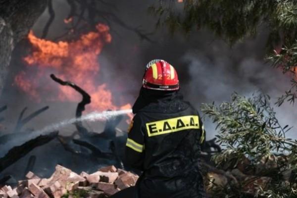 Φωτιά στην Κεφαλονιά: Ενισχύθηκαν οι δυνάμεις της πυροσβεστικής - Στην περιοχή πνέουν ισχυροί άνεμοι - Υψηλός ο κίνδυνος πυρκαγιάς για πολλές περιοχές