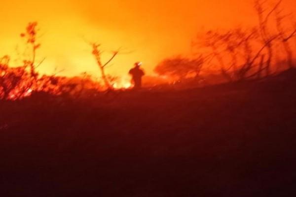 Φωτιά στην Κεφαλονιά: Ολονύχτια μάχη με εκκενώσεις οικισμών - Ενεργοποιήθηκε το 112