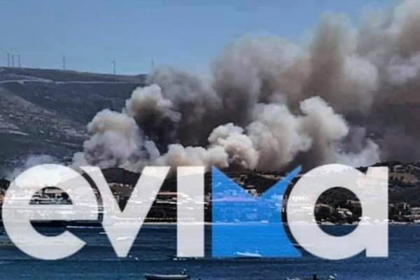 Φωτιά στην Εύβοια: Εκκενώθηκε ο οικισμός Νημποριό - Συναγερμός στην χώρα λόγω ισχυρών ανέμων