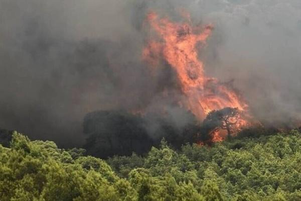 Φωτιά στο Βαρνάβα - Ποιες περιοχές της Αττικής κινδυνεύουν