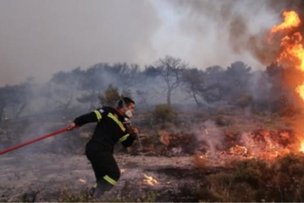Φωτιά και στο Βόλο - Συναγερμός σε όλη την χώρα από τους ισχυρούς ανέμους