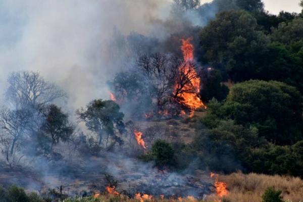 Νέα φωτιά στα Στύρα Ευβοίας - Κολασμένο Σάββατο για την Πυροσβεστική
