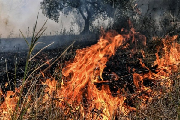 Προσοχη! Υψηλός κίνδυνος πυρκαγιάς σε Αττική, Πελοπόννησο και Κρήτη, για αύριο Σάββατο