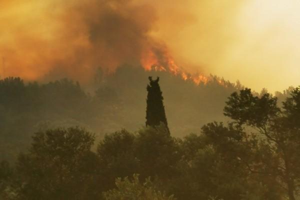 Βόλος: Πυρκαγιά στην περιοχή Περίβλεπτο