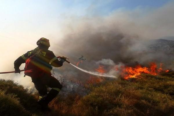 Πολύ υψηλός ο κίνδυνος πυρκαγιάς - Ποιες περιοχές βρίσκονται σε επιφυλακή - Στους 44 βαθμούς η θερμοκρασία