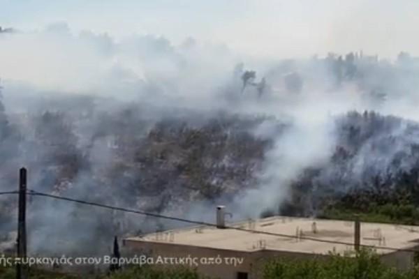 Διαστάσεις σοκ η φωτιά στον Βαρνάβα Αττικής: Στις αυλές σπιτιών οι φλόγες - Σοκαριστικό βίντεο από drone της Πυροσβεστικής!