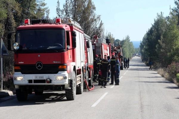 Νέα φωτιά στην Εύβοια - Πνέουν ισχυροί άνεμοι