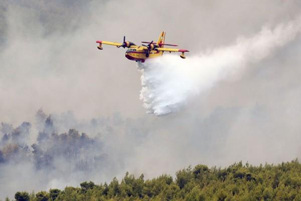 Φωτιά στη Φθιώτιδα: Οι φλόγες πλησιάζουν το Λογγίτσι - Εκκενώθηκε το χωριό