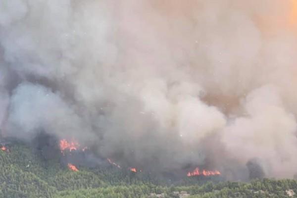Συναγερμός στη Βόρεια Εύβοια - Νέα αναζωπύρωση φωτιάς στο Τρούπι