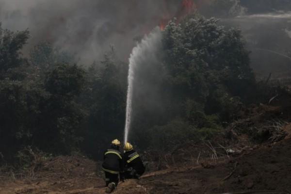 Φωτιά στην Εύβοια: Σε πύρινο κλοιό για 8η ημέρα - Μάχη με τις αναζωπυρώσεις σε Ελληνικά, Αγριοβότανο, Ασμήνι, Γαλατσώνα και Αβγαριά