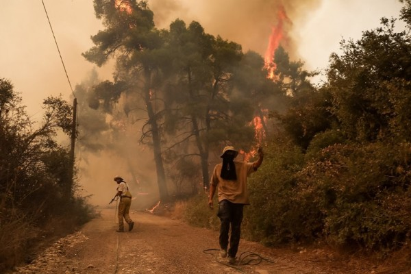 Φωτιά στην Εύβοια: Τυλίχτηκαν στις φλόγες οι Γούβες - Εκκενώνεται το Πευκί - Απειλείται η Γαλατσώνα