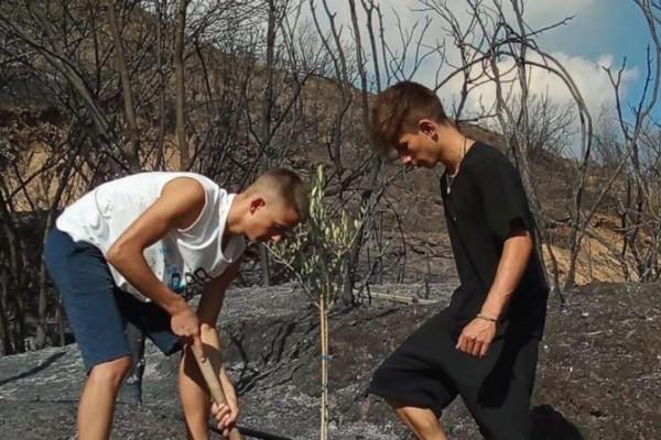 Φωτιά - Αρχαία Ολυμπία: Δύο 15χρονοι φύτευσαν το πρώτο δέντρο