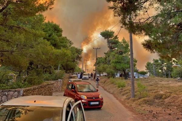 Φωτιά: Παραδόθηκε στις φλόγες το Κρυονέρι