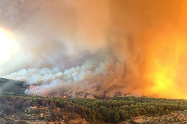 Νέα φωτιά στην Εύβοια στην περιοχή Μεσοχώρια Καρύστου