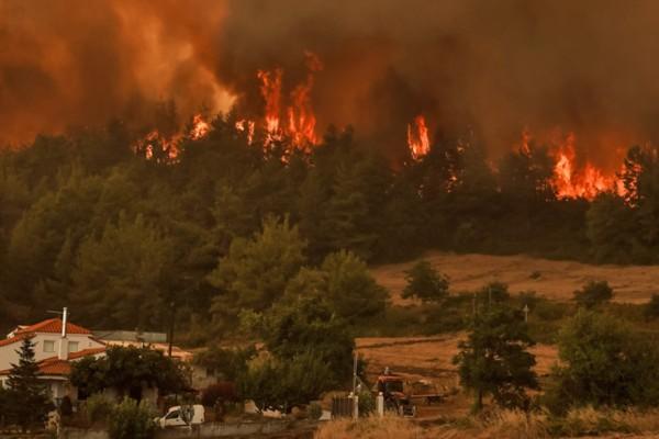 Φωτιά στην Εύβοια: Εντολή για εκκένωση σε Γαλατσάδες, Καματριάδες και Μηλιές