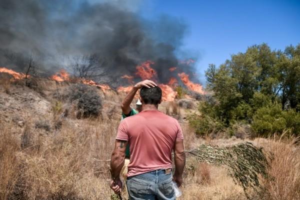Έτσι ξεκίνησε η φωτιά στα Βίλια - Βίντεο ντοκουμέντο