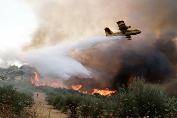 Νέα φωτιά στην Αρχαία Ολυμπία - Στο σημείο πυροσβεστικές δυνάμεις