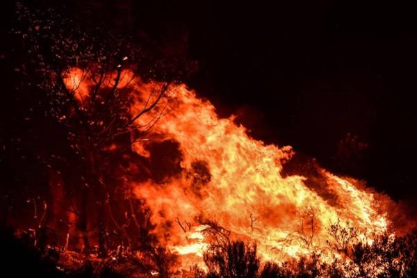 Νύχτα αγωνίας στον Ασπρόπυργο: Πρόλαβε τα χειρότερα η Πυροσβεστική - Πού έκλεισε ο δρόμος λόγω της φωτιάς
