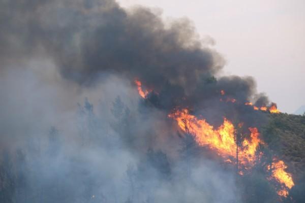Σοκάρει η ομολογία του 14χρονου: «Μου αρέσουν οι φωτιές και οι καπνοί»