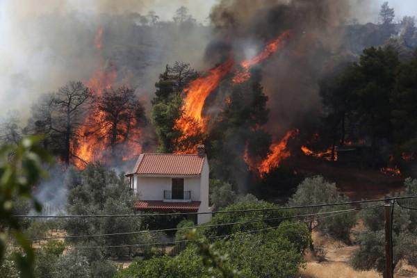 Φωτιά στην Εύβοια: Κατευθύνεται προς το μοναστήρι του Όσιου Δαβίδ - «Χρειαζόμαστε ενισχύσεις», λέει ο ηγούμενος Γαβριήλ