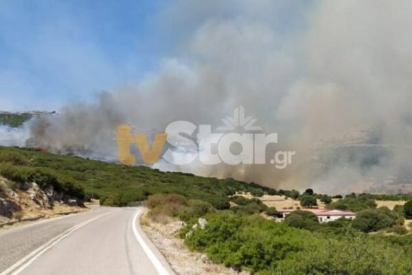 Νέα φωτιά στην Νότια Εύβοια - Συναγερμός λόγω ισχυρών ανέμων