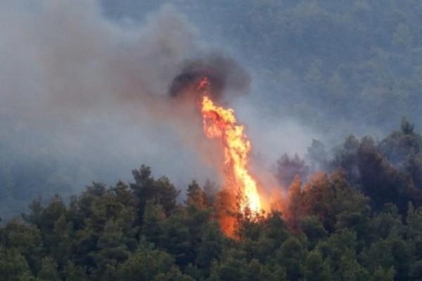 Φωτιά στη Φθιώτιδα: Εκκενώνεται ο Θεολόγος - Μήνυμα από το 112